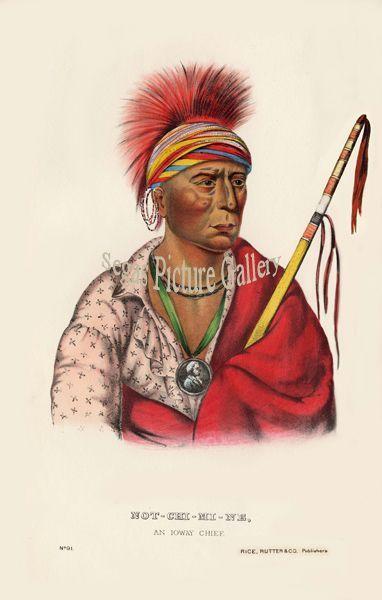 Fine art print of the American Indian Not-Chi-Mi-Ne an loway Chief by McKenney & Hall