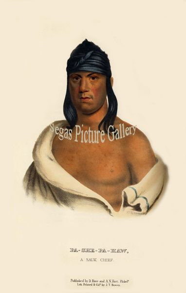 Fine art print of the American Indian Pa-She-Pa-Haw, or The Stabber, a Sauk Chief by McKenney & Hall